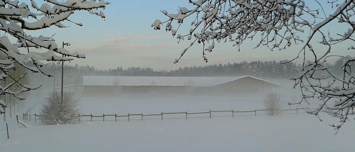 Weilermühle Schnee